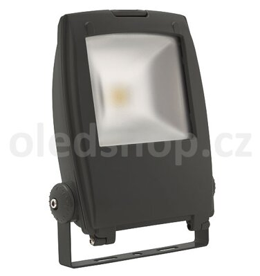 LED reflektor 30W RINDO LED MCOB-30-GM, 230V, IP65